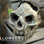 stolloweenancient-skulls-34