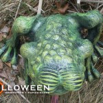 stolloween-frog-photos-10