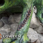 stolloween-frog-photos-13