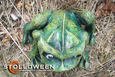 stolloween-frog-photos-19