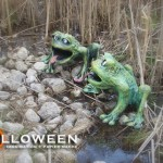 stolloween-frog-photos-27