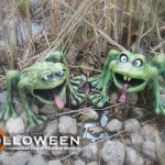 stolloween-frog-photos-28