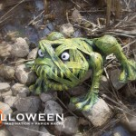 stolloween-frog-photos-31