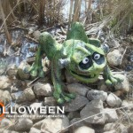 stolloween-frog-photos-32