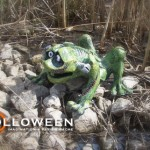 stolloween-frog-photos-33