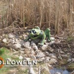 stolloween-frog-photos-34