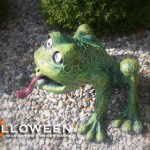 stolloween-frog-photos-35