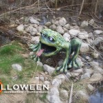 stolloween-frog-photos-4