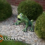 stolloween-frog-photos-40