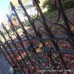 FENCE AND GATEKEEPER (13)
